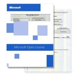 Microsoft Windows Server CAL 2012 - Russian - OLP Level A Goverment - User CAL (R18-04397)