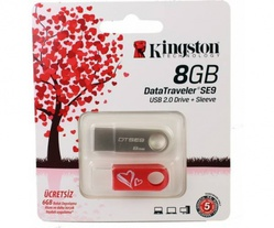 DataTraveler SE9 8 Gb (8 Gb/USB 2.0/серебристый/чехол) [DTSE9H/8GB]